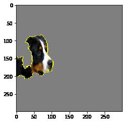 모델이 사진을 개로 분류하는 데 가장 중요했던 요소만 뽑아볼 수 있습니다.