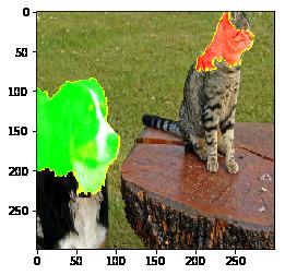 LIME으로 개와 고양이 이미지 분류 모델의 예측 결과 설명하기