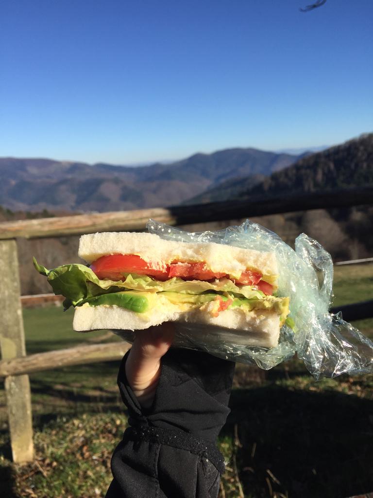 sandwich sur le pouce à l'houmous, avocat, salade, tomate